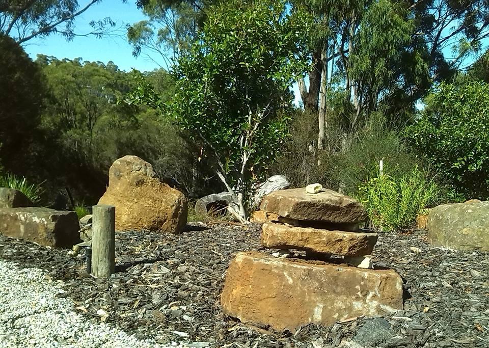 garden home for lizards tasmania nw