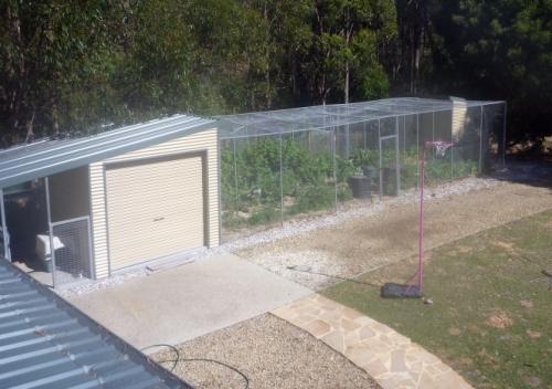 Vegetable Garden Cage